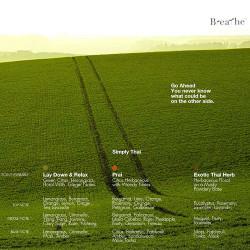 Rice Field Diffuser