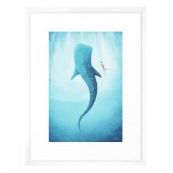 The Whale Shark - Medium