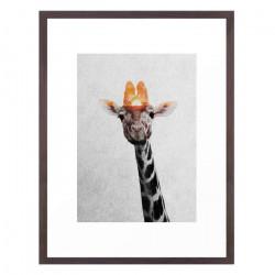 Giraffe - Walnut Medium