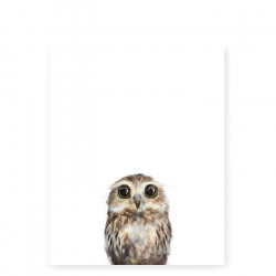 Little Owl art print - Small