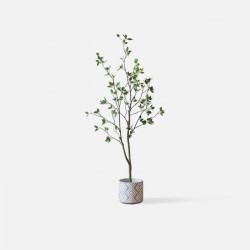 Tea Tree H150/H180