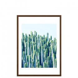 Cactus V2, Medium [In-Stock]