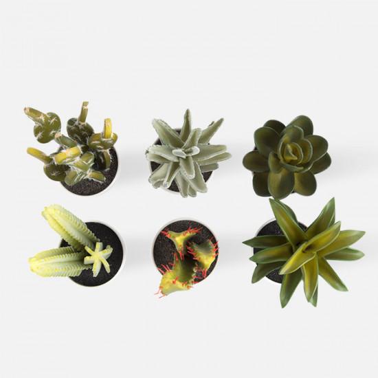 Artificial Plant [Display]